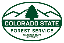 Forestry Grant Work